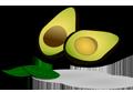 avocado-1439294_1280-copy
