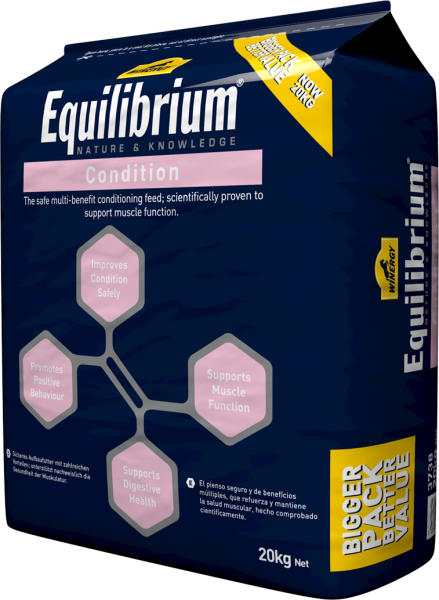 WINERY Equilibrium Condition bag