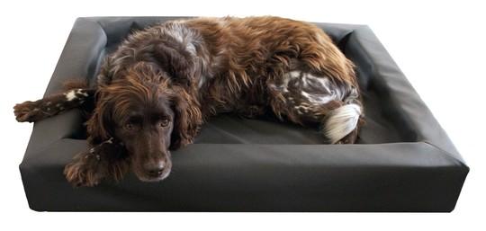 Hundebett Lounge
