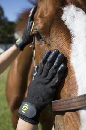 HandsOn Grooming Glove Putzhandschuh