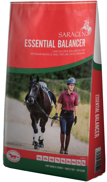 Saracen Essential Balancer bag