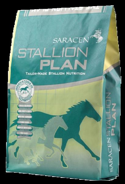 Stallion Plan für Zuchthengste