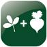 combines-alfalfa-sugar-beet