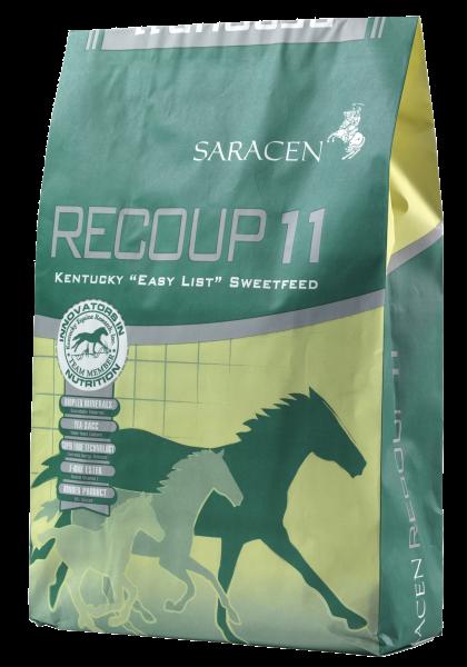 Saracen Recoup 11 bag