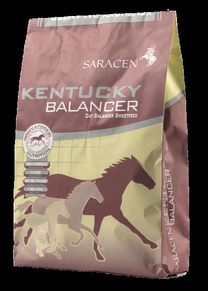 Saracen Kentucky Balancer bag