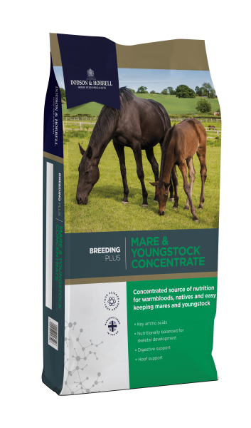 Dodson & Horrell Mare & Youngstock Concentrate bag