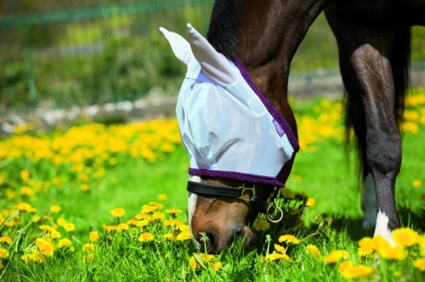 Fliegenmaske Amigo Flymask extra feinmaschig Silver, Purple