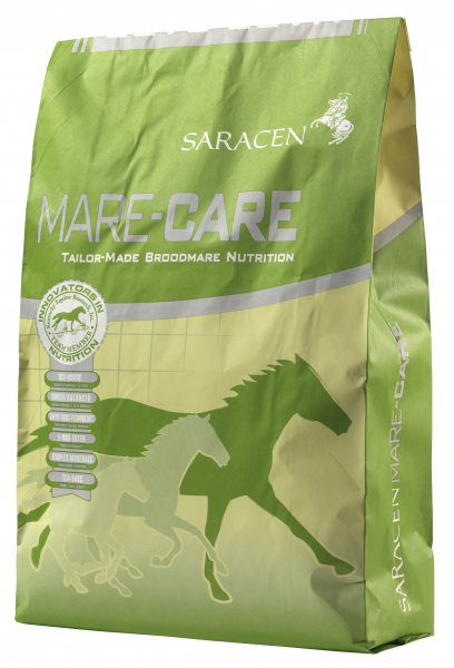 Saracen Mare-Care bag
