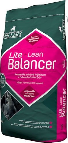 SPILLERS Lite + Lean Balancer bag