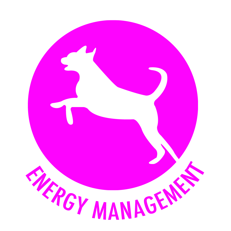 Chudleys-Roundal-Energy-management