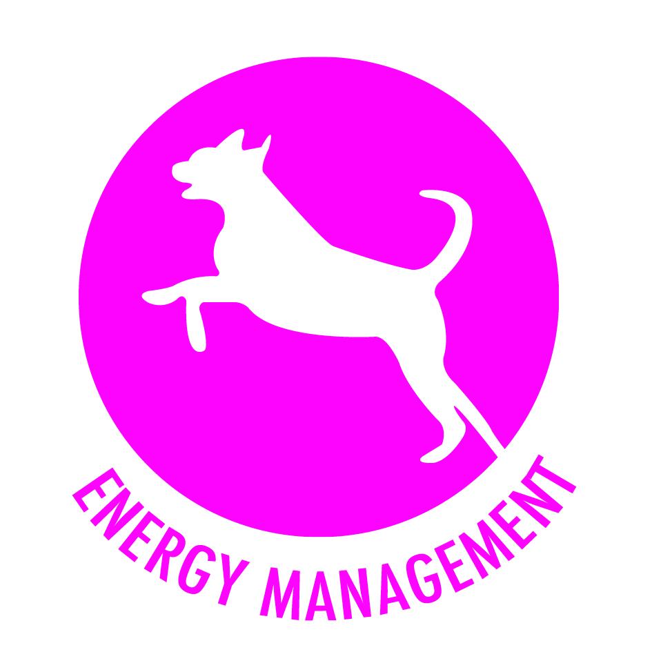 Chudleys-Roundal-Energy-management