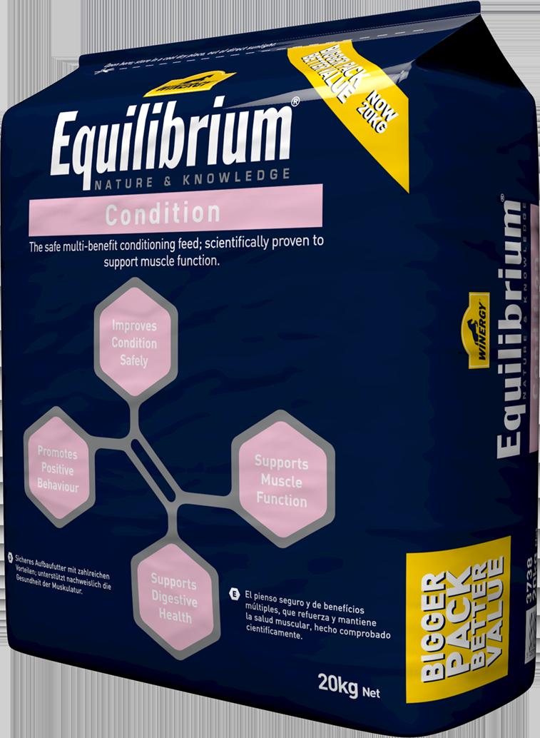 equilibrium-condition-right_1