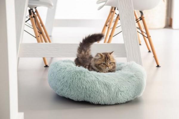 Plüschbett für Katzen