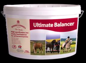 D&H Ultimate Balancer 10 kg